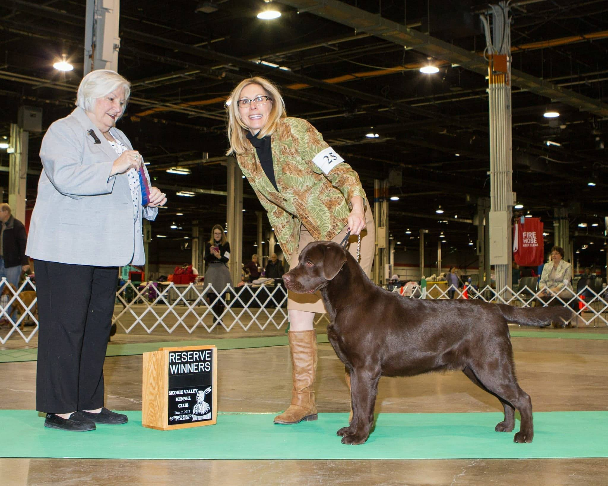 Reserve Winners Dog - Judge Gloria Gerringer