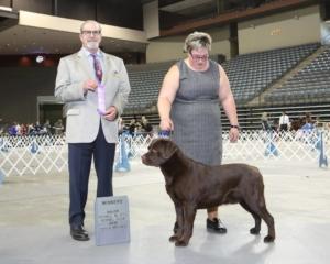 Winners Dog 3pt major